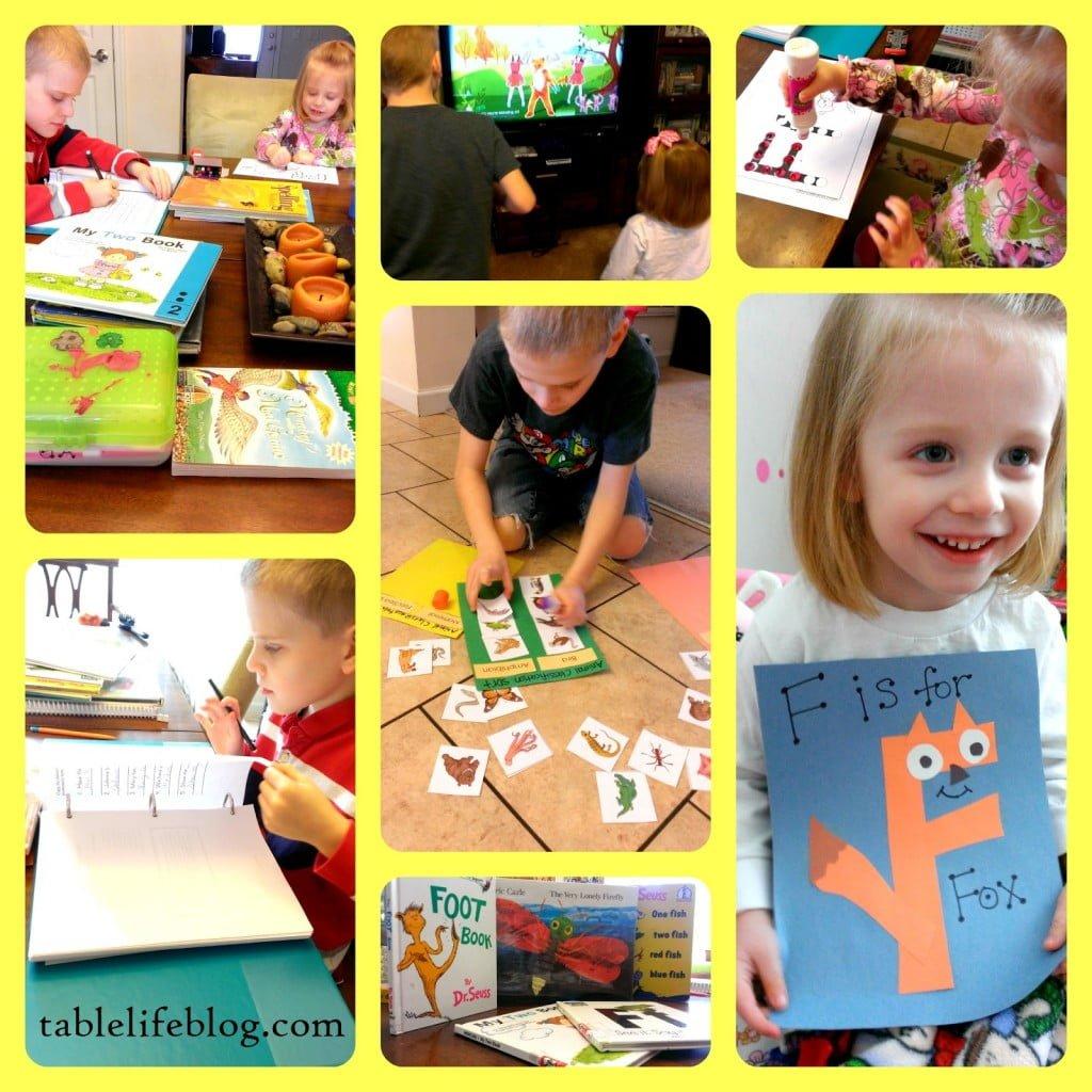 week in review rundown letter f preschool homeschool letter of the week f animal classification