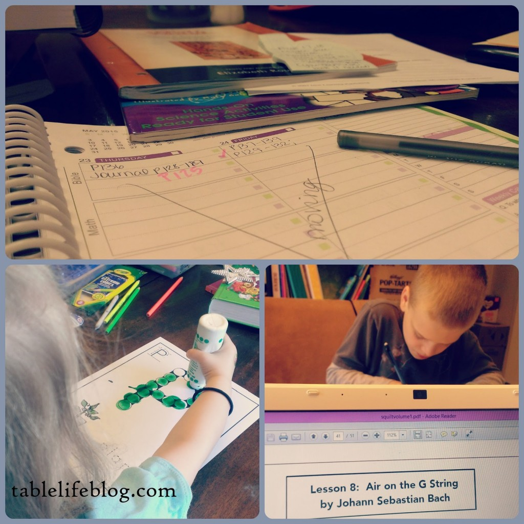Rundown Week in Review homeschool collage