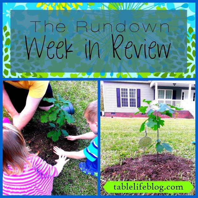 Rundown Week in Review Planting Tree
