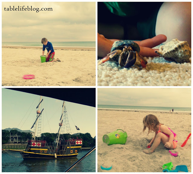 The Rundown: Beach time, hermit crabs, and pirate ships.  Oh, my!