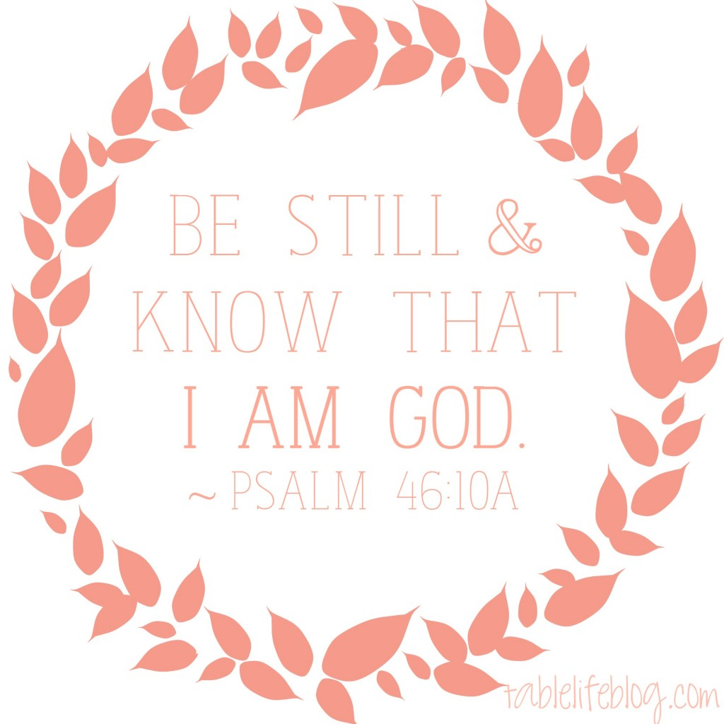 Be Still and Know That I Am God - Psalm 46:10 - To the Mom Worried About a Special Needs Diagnosis