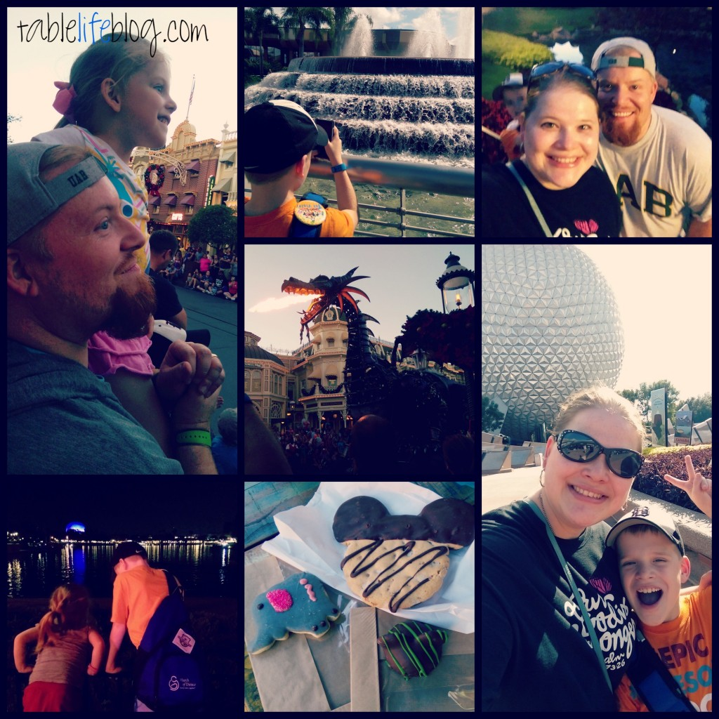 My Favorite Posts from 2015: The Rundown - Disney World Edition
