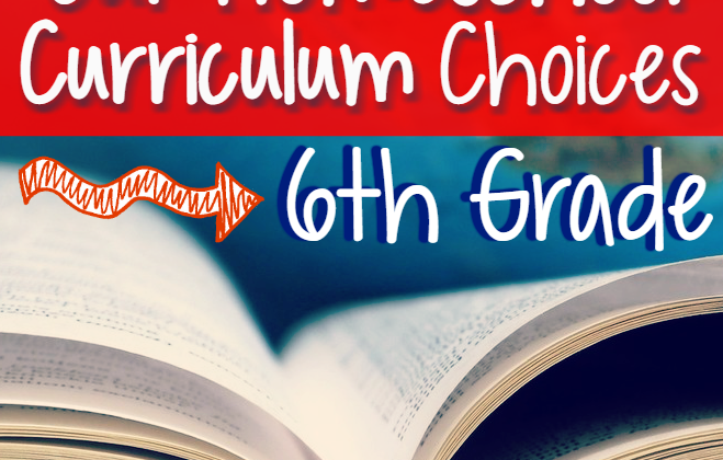 Our Homeschool's 6th Grade Curriculum Choices