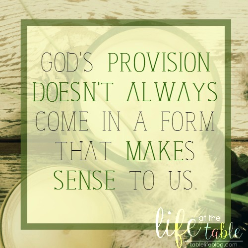 Exodus for the Homeschool Heart - God's provision doesn't always come in a form that makes sense to us.
