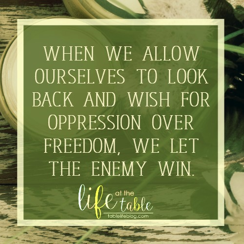 Exodus for the Homeschool Heart - When we allow ourselves to look back and wish for oppression over freedom, we let the enemy win.