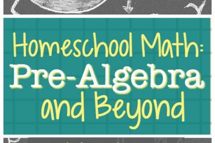 Homeschool Math: Pre-Algebra and Beyond with Mr. D Math
