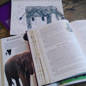 Bright Ideas Press MOH Elephants