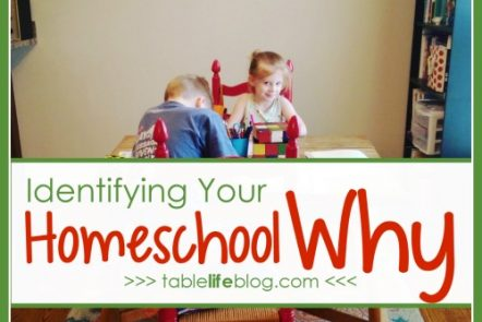Homeschool Mother's Journal: Identifying Your Homeschool Why