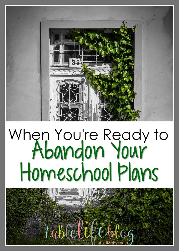 What to do when you're tempted to abandon your homeschool plans