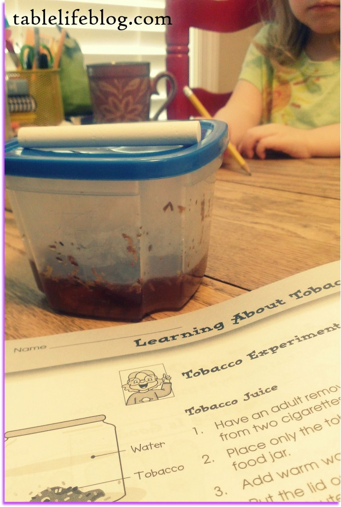 Summer Schooling - a look at homeschool science in the summer