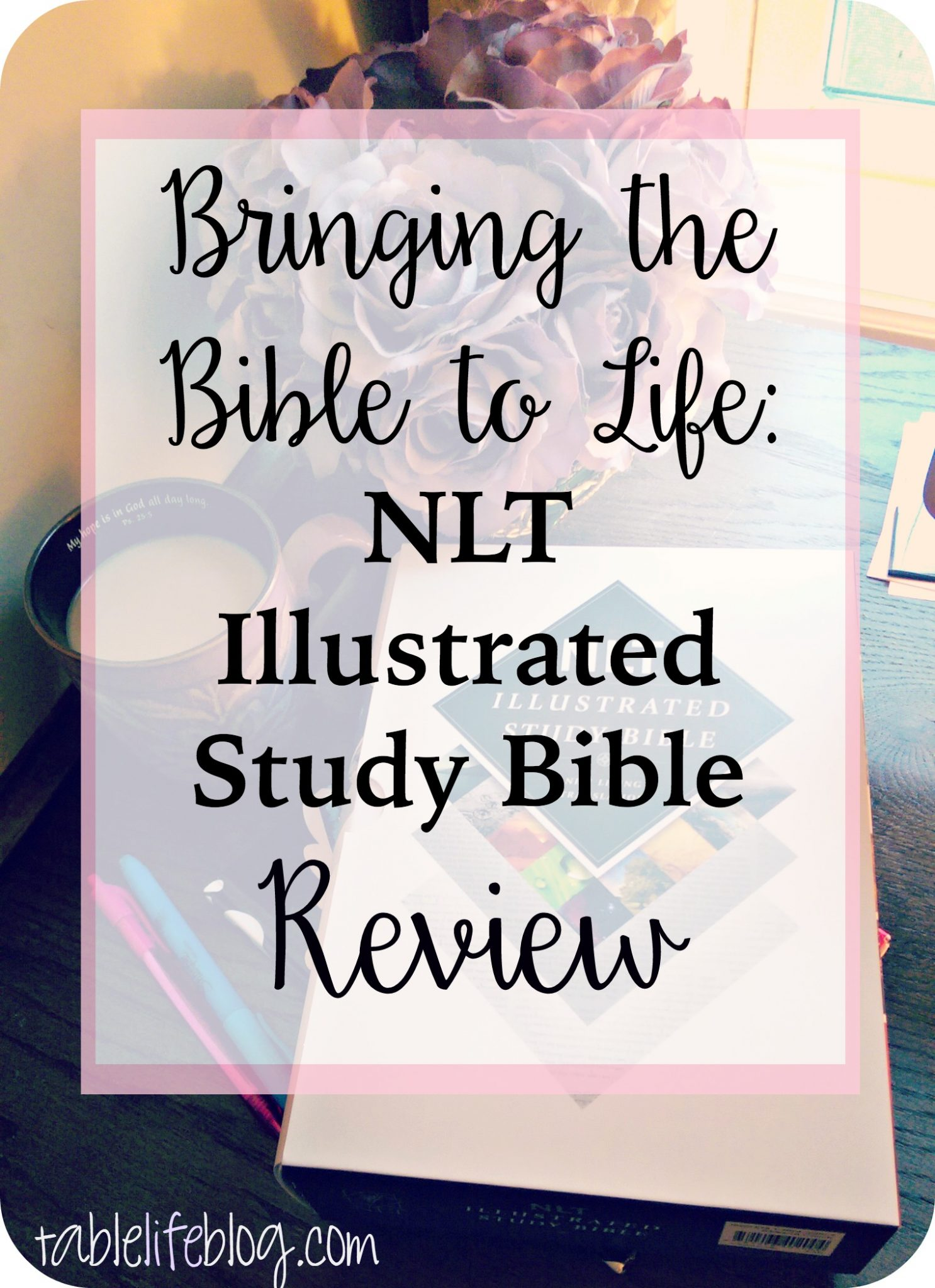 NLT Illustrated Study Bible Review