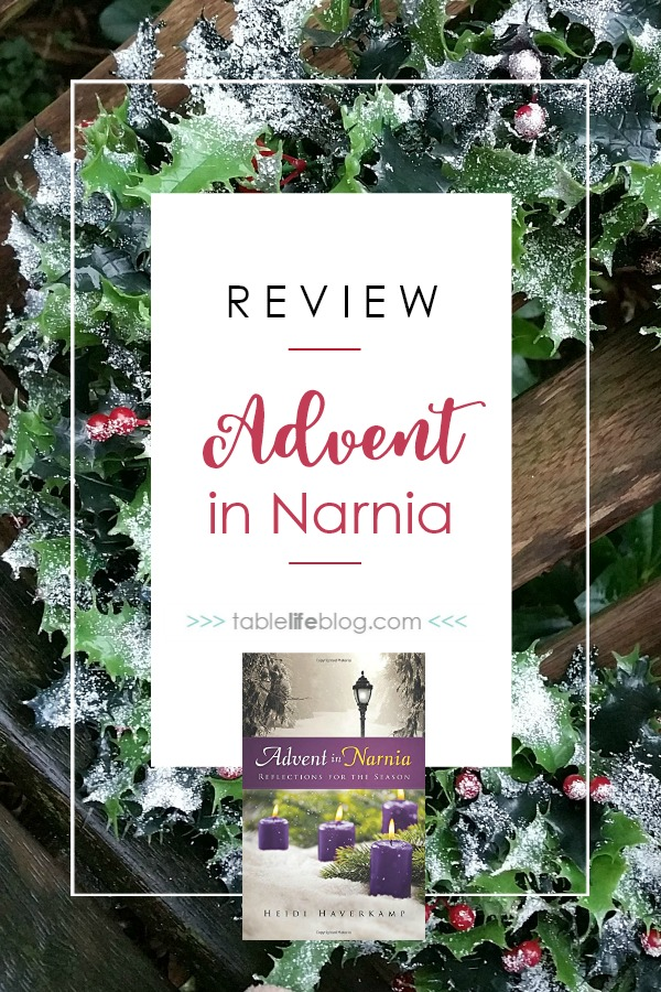 Advent in Narnia Review