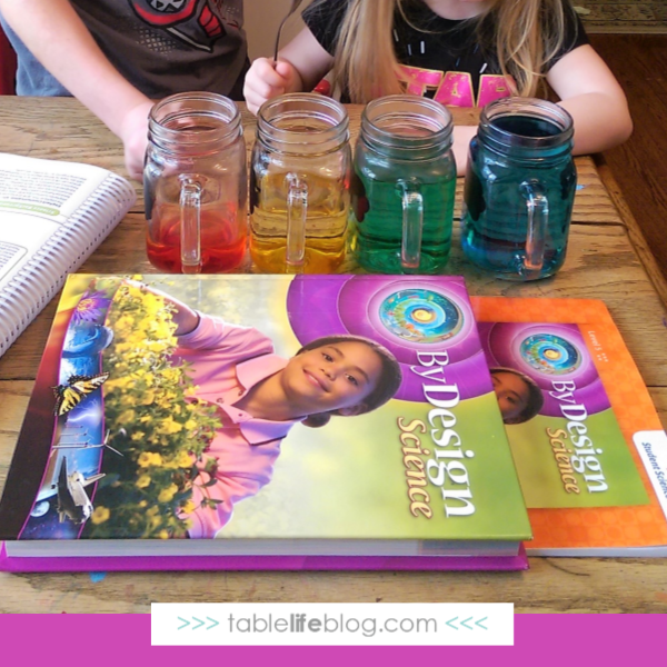Science By Design Curriculum: By Design: A Faith-Based Science Curriculum • TableLifeBlog