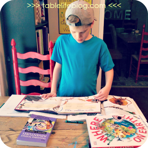 6th Grade Curriculum Choices for Homeschool - Sassafras Science