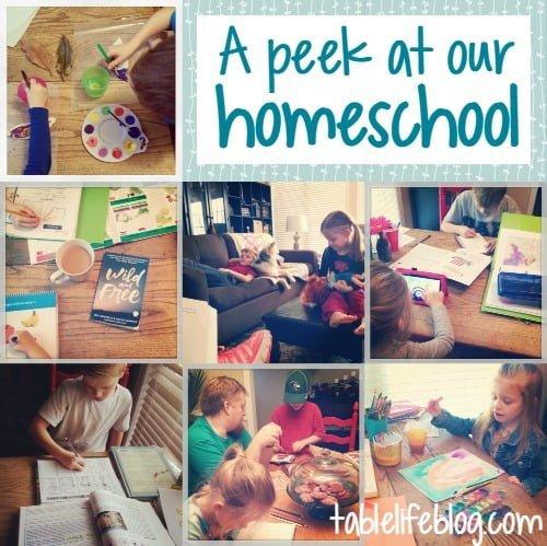 A peek at our homeschool