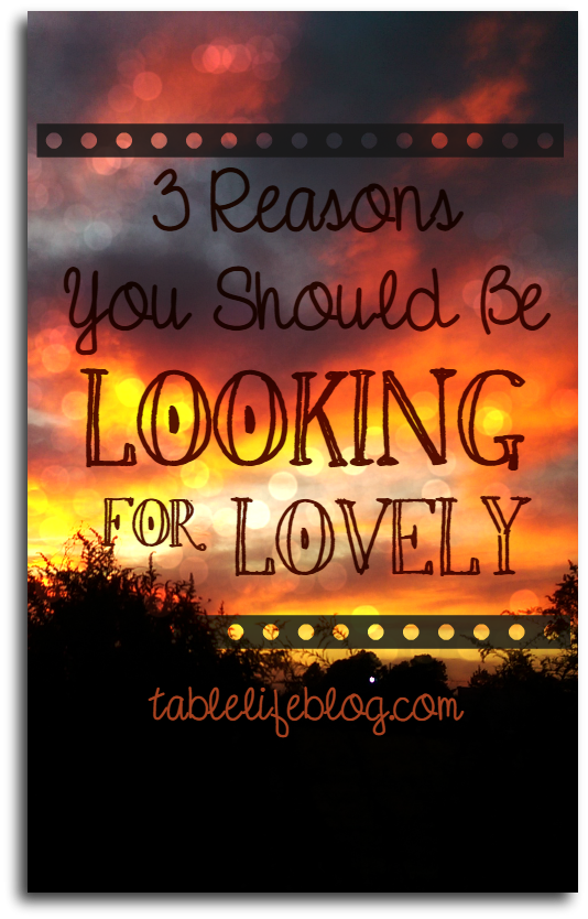 A Review of Looking for Lovely by Annie F. Downs