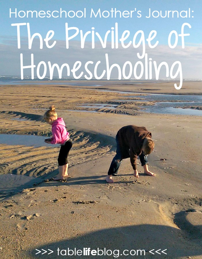 Homeschool Mother's Journal: The Privilege of Homeschooling