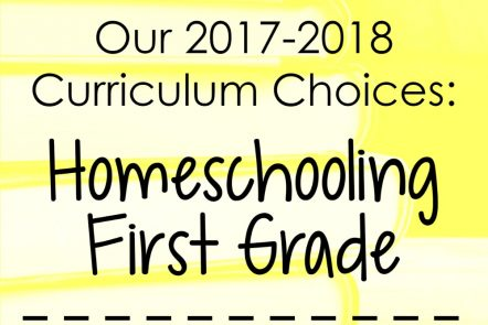 Our 2017-2018 Curriculum Choices: Homeschooling First Grade