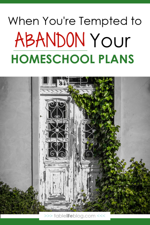 When you're tempted to abandon your homeschool plans