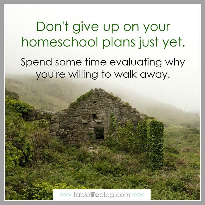 What to do when you're ready to abandon your homeschool plans