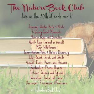 The Nature Book Club Linkup Schedule - Bird Egg Craft Project Inspired by An Egg is Quiet