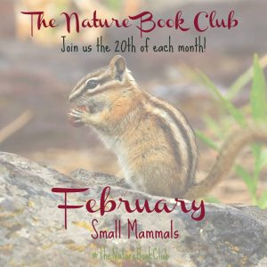 The Nature Book Club February Linkup - Nuts to You! Watercolor Squirrel Art Project