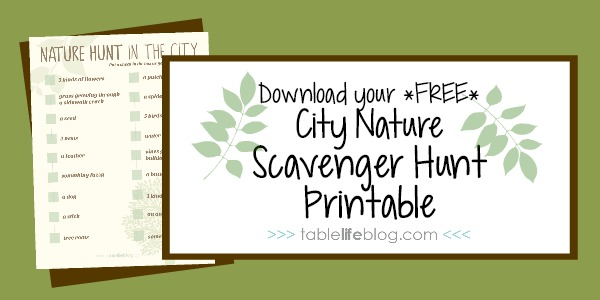 City Nature Scavengure Hunt Printable