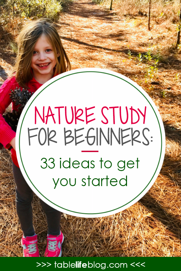 Nature Study for Beginners: 33 Easy Ideas to Help You Get Started