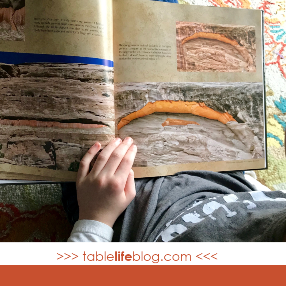Why you should be teaching creation science in your homeschool