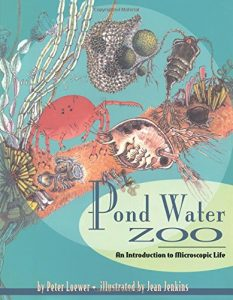 What to Read: Children's Books About Pond Life