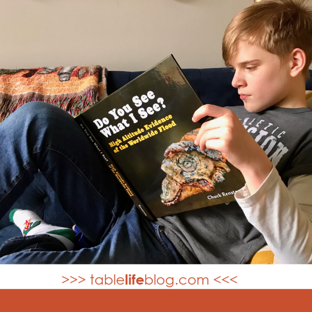 Need some incentive for teaching creation science in your Christian homeschool? Here are 3 reasons to make time for it, no matter how full your homeschool planner is!