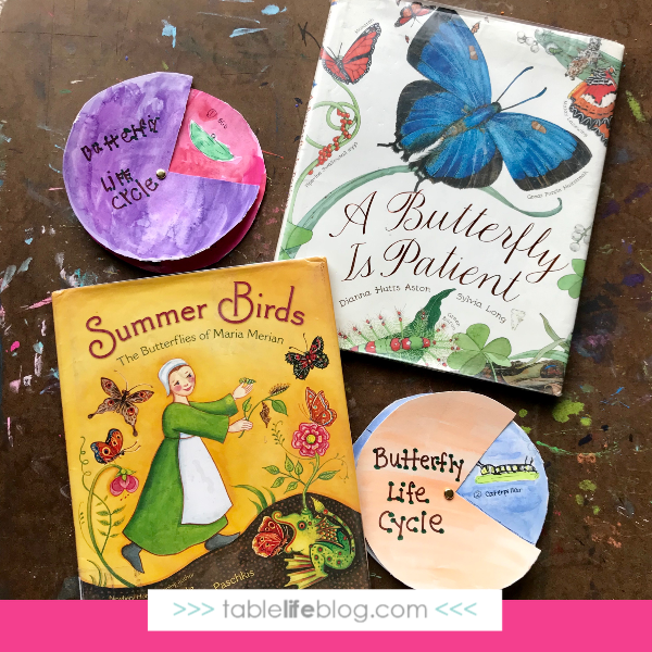 Nature Book Club: Butterfly Life Cycle Watercolor Wheel Inspired by Maria Merian