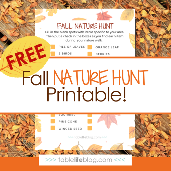 8 Fun and Easy Fall Nature Study Ideas (Free Fall Nature Hunt Printable)