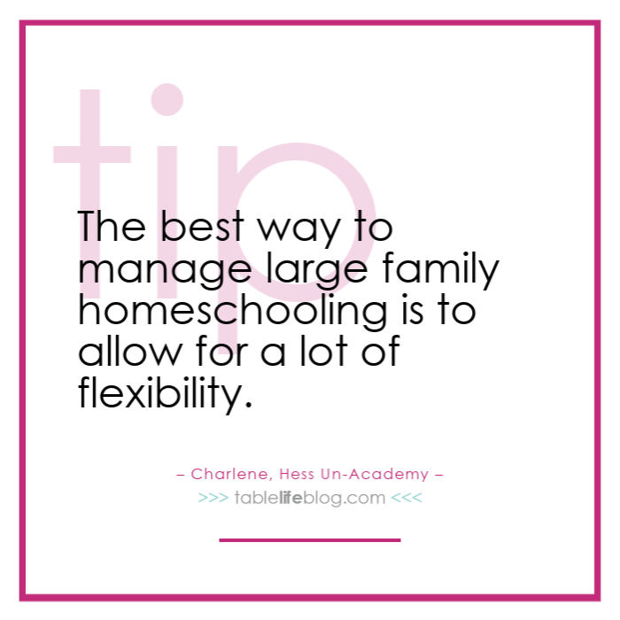 Planning Tips for Large Family Homeschooling