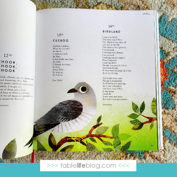 With lovely poems and gorgeous illustrations, Sing a Song of Seasons is a poetry collection for Earth Day and every day in your homeschool.