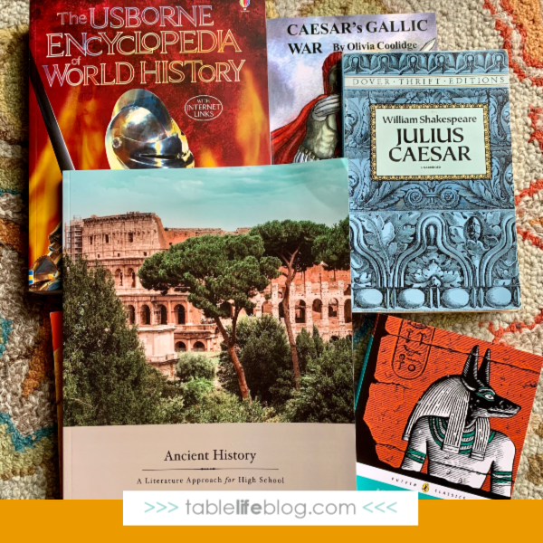 Our Charlotte Mason-Inspired 10th Grade Homeschool Curriculum Choices - Ancient History