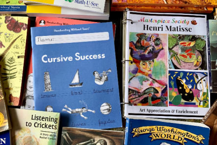 Our Charlotte Mason-Inspired 4th Grade Homeschool Curriculum Choices