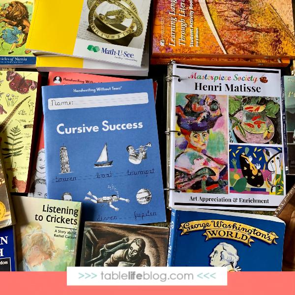 Our Charlotte Mason-Inspired 4th Grade Homeschool Curriculum Choices