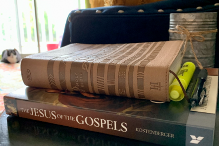 The Jesus of the Gospels: a Bible Commentary for Christian Teens