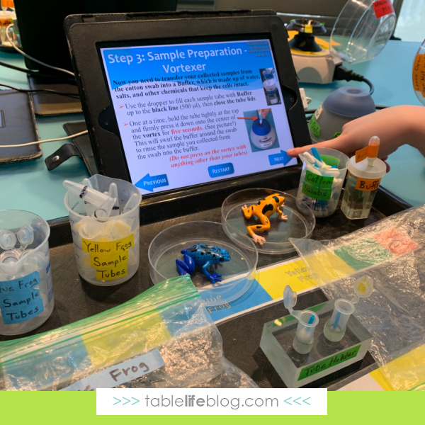 Field trips are a fantastic way to add hands-on learning activities that are hard to pull off at home.