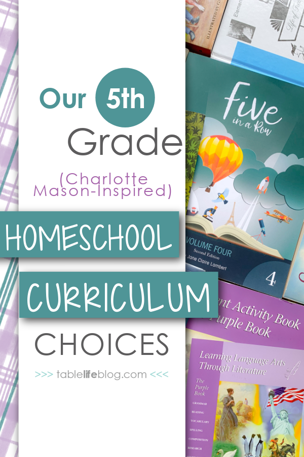 Another year of homeschooling is just around the corner for us! Here's a look at our 5th grade homeschool curriculum choices for next year.