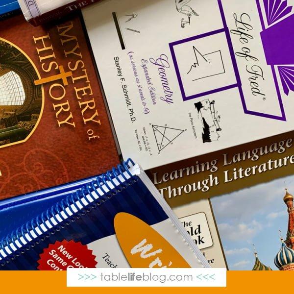 Homeschooling High School: Our 11th Grade Curriculum Choices