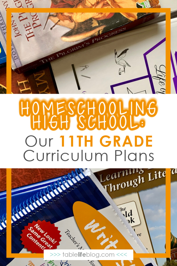 Looking for inspiration for the high school years of #homeschooling? Here's a look at our 11th grade curriculum choices.
