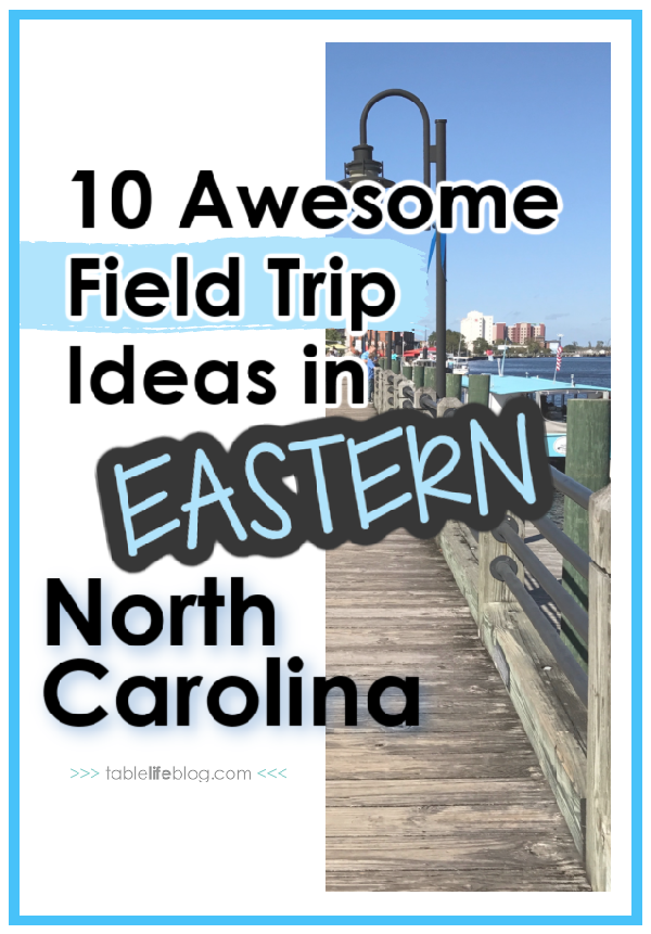 Looking for eastern North Carolina field trip ideas to work into your homeschool plans? Here are some fun and educational spots you'll love!
